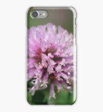Red Clover (Trifolium pratense) iPhone Case/Skin