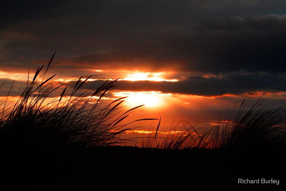 Norfolk Sunset by Richard Burley
