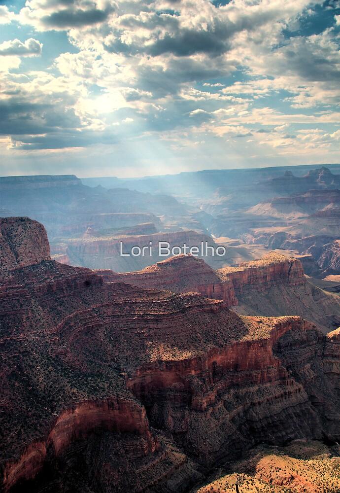 canyon rays by Lori Botelho