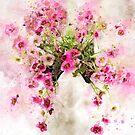 Saxifraga Tangle Splash by Ann Garrett