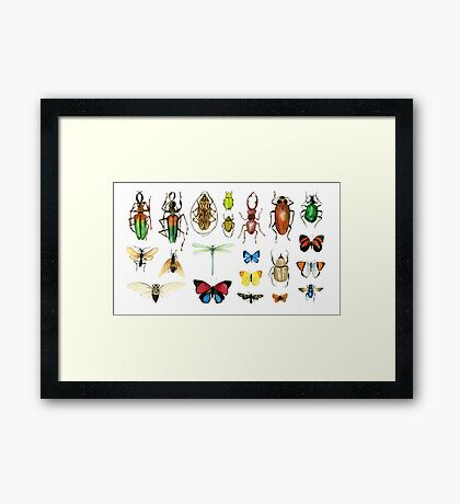 The Usual Suspects - insects on white - watercolour bugs pattern by Cecca Designs Framed Print