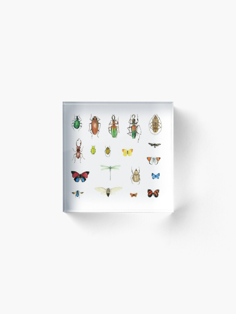 Alternate view of The Usual Suspects - insects on white - watercolour bugs pattern by Cecca Designs Acrylic Block