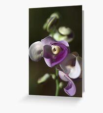 Snail Flower Greeting Card