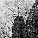 South Gate of Angkor Thom by fatfatin