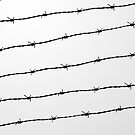 Cool gray white and black barbed wire pattern by PLdesign