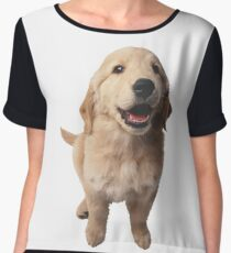 Puppy! Retriever! Women's Chiffon Top