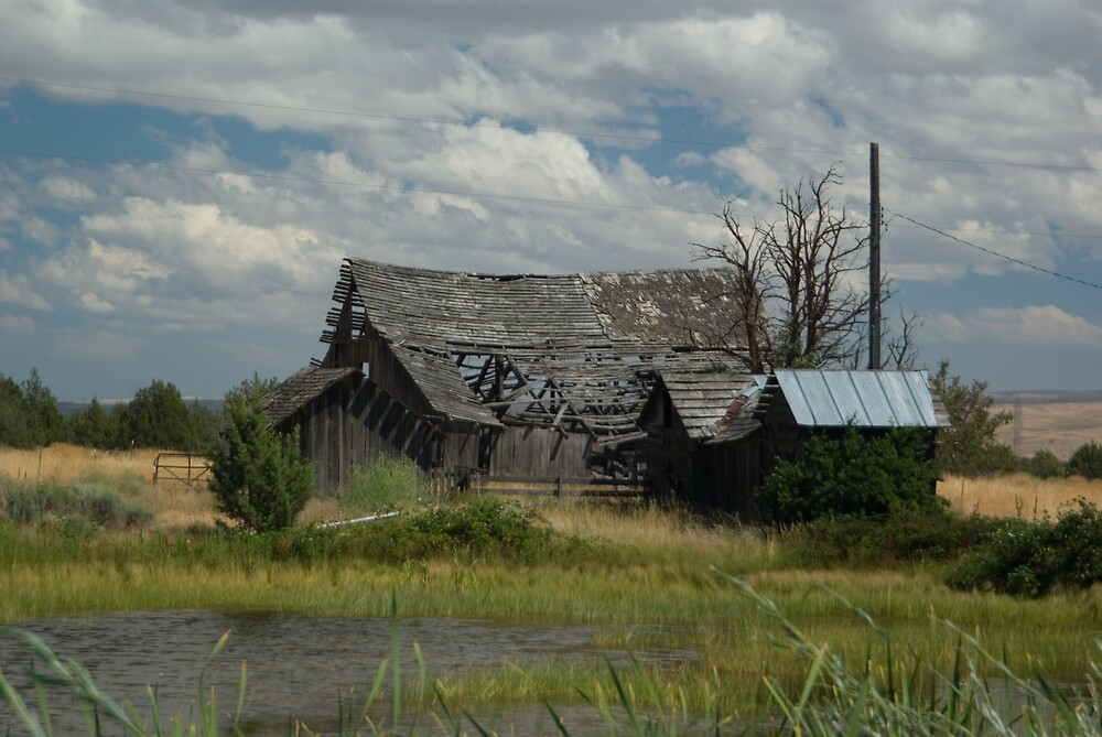 Old Barn by Sharoncr