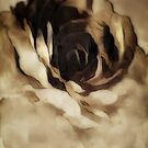 Russet Rose by WishesandWhims