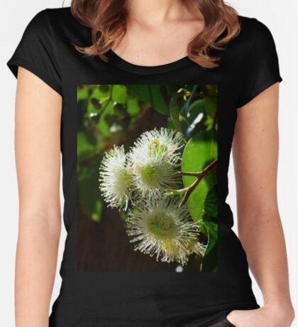 Eucalypt Women's Fitted Scoop T-Shirt