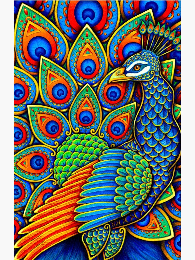 Bunter Paisley-Pfau-Regenbogen-Vogel von lioncrusher