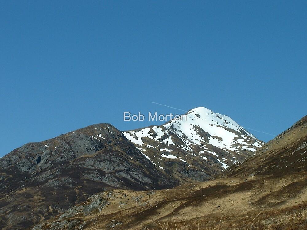 mountain top or jet? by Bob Morton