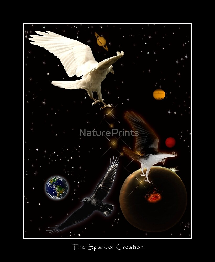 """Spark of Creation"" Artwork by Val Brackenridge by NaturePrints"