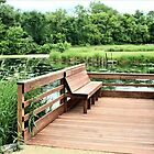 Sitting on the Dock of the Marsh by Martha Sherman