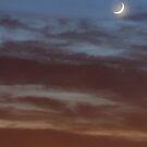 Moon Over Dallas by deividmx