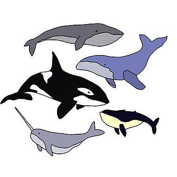 Whales by annac99