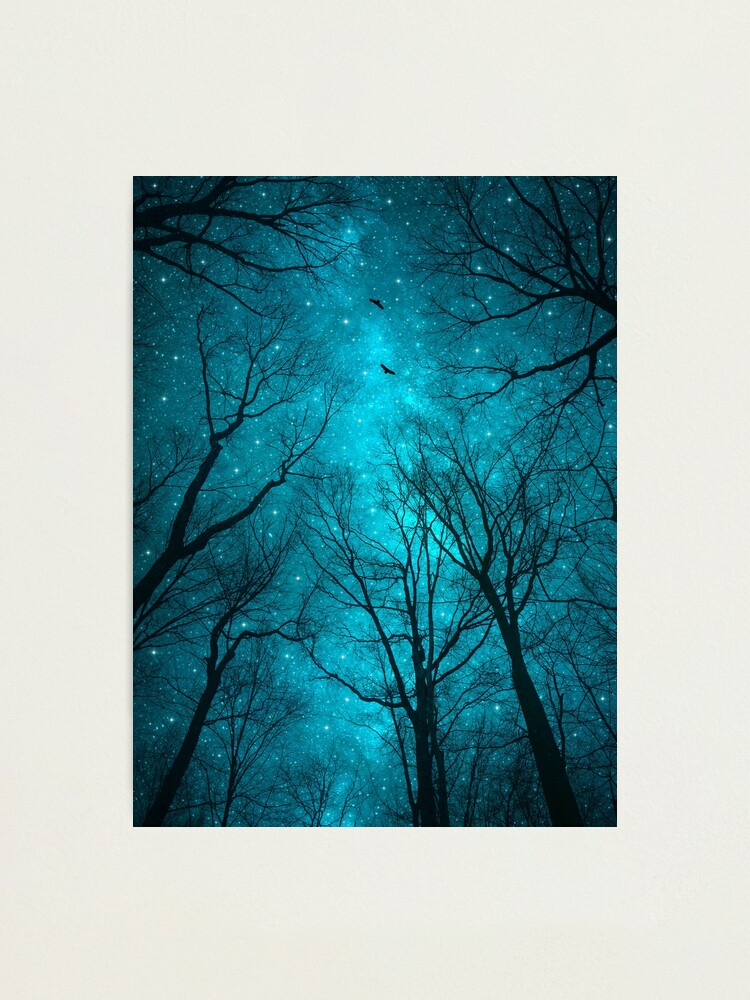Alternate view of Stars Can't Shine Without Darkness Photographic Print