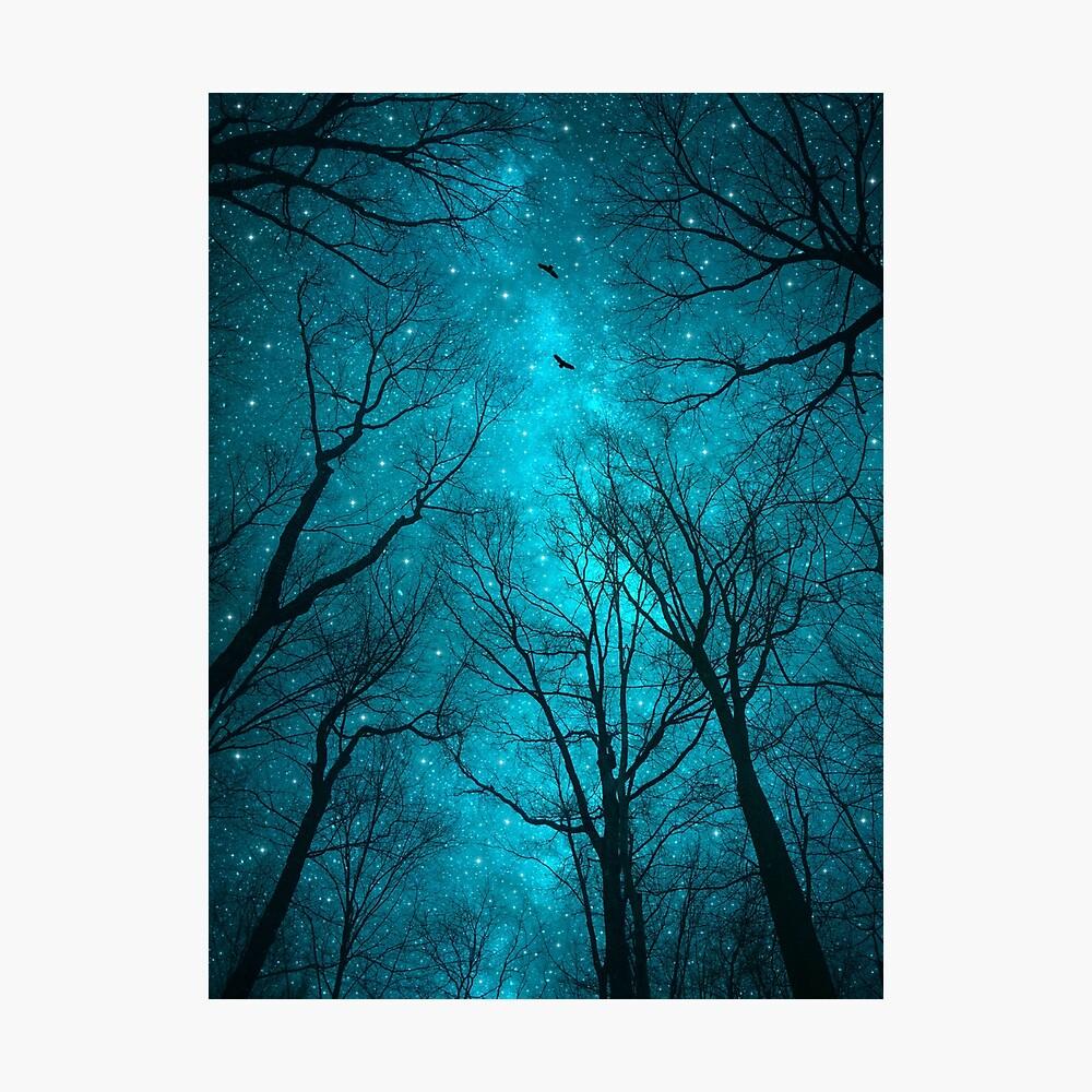 Sterne können nicht ohne Dunkelheit leuchten Fotodruck