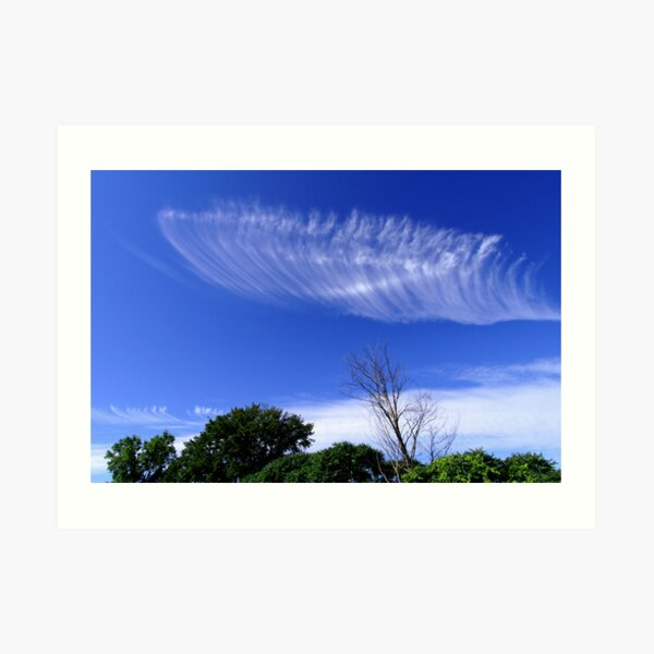 Angel Wing Art Print