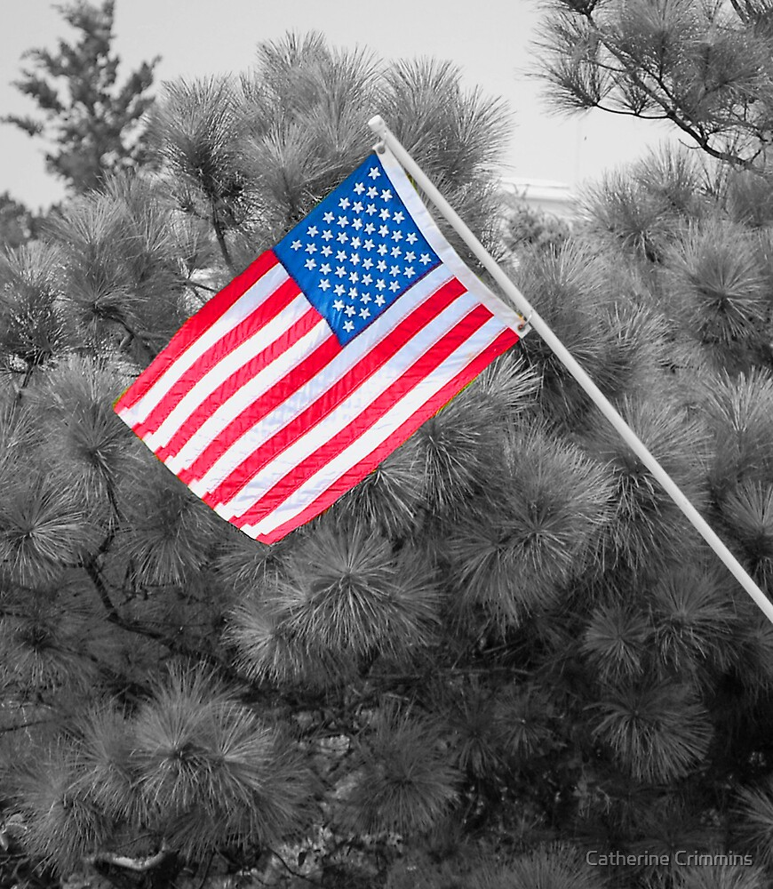 Red, White and Blue by Catherine Crimmins
