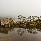 Tarn Shelf, Mount Field, Tasmania by fiona-gumboots