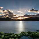 Northern suburbs sunset by fiona-gumboots