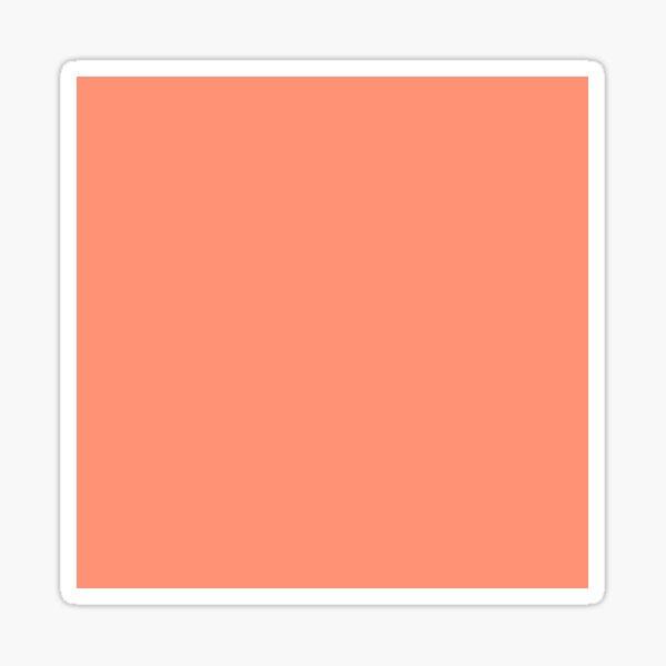 Palette . Coral  Sticker