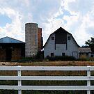 Barns of Boulder 4 by Pamela Hubbard