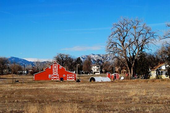 Barns of Boulder 5 by Pamela Hubbard