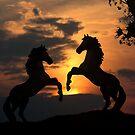 Sunset Showdown by Samantha Dean