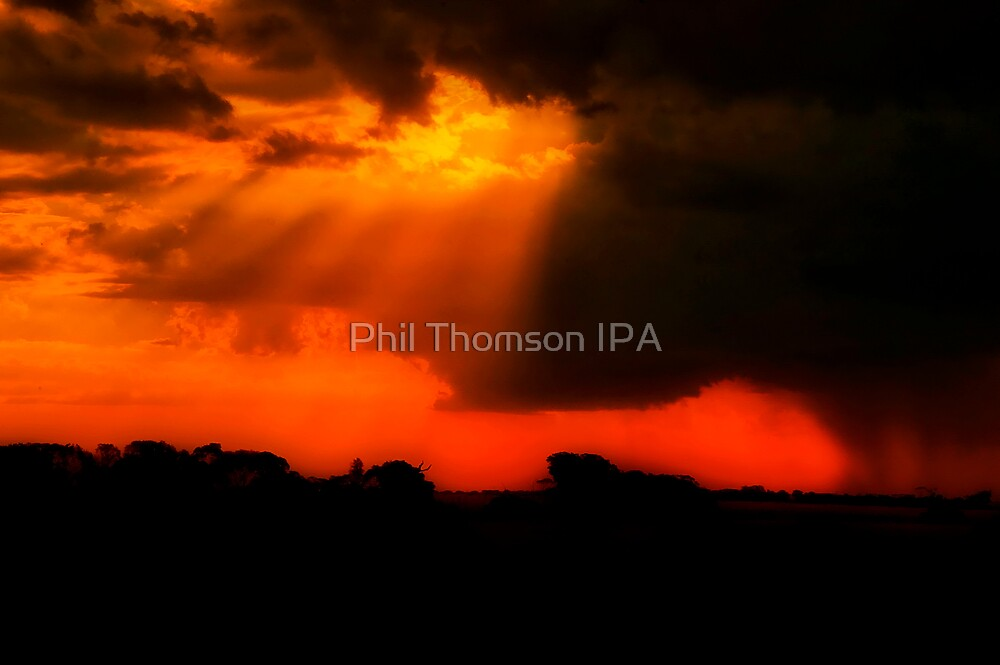 """Let There Be Light"" by Phil Thomson IPA"