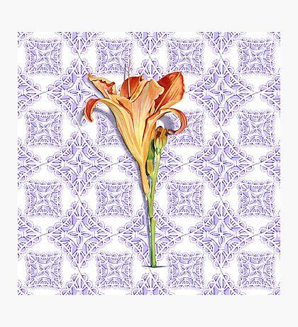 Daylily Lace Photographic Print