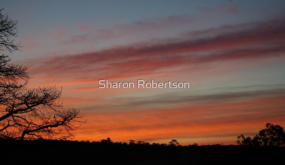 Sunset by Sharon Robertson