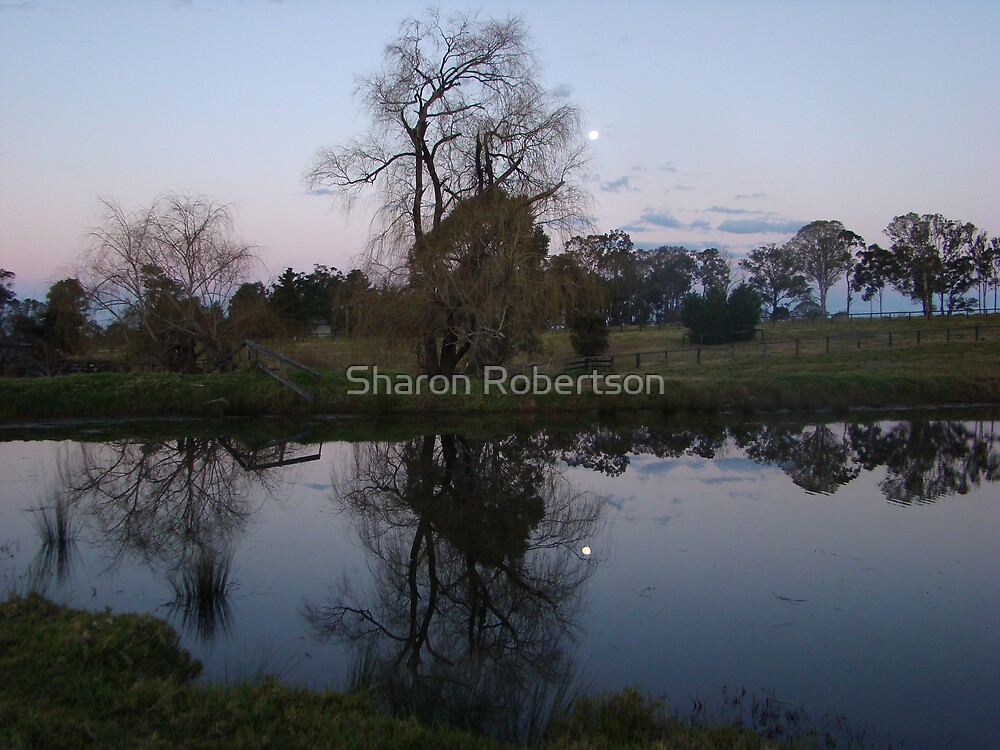 Dam Moon Reflection by Sharon Robertson