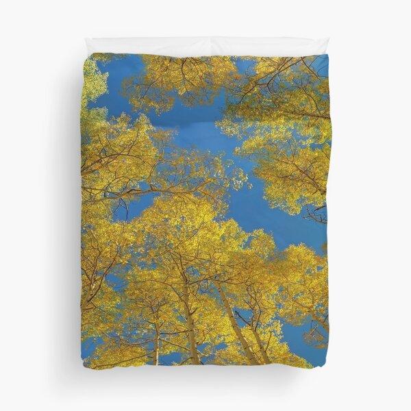 Aspen Trees Against Sky  Duvet Cover