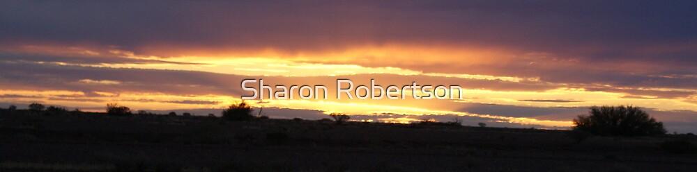 Sunset in the Desert by Sharon Robertson