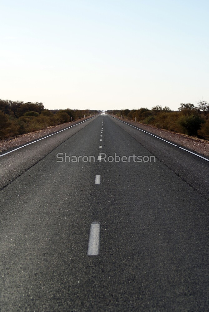 Long Road Home by Sharon Robertson