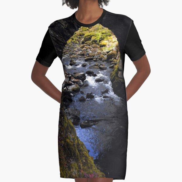 Old Bridge Graphic T-Shirt Dress