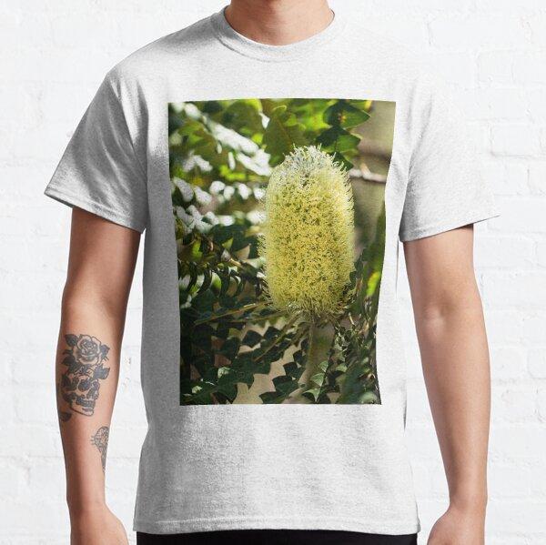 Bull Banksia - Banksia grandis Classic T-Shirt