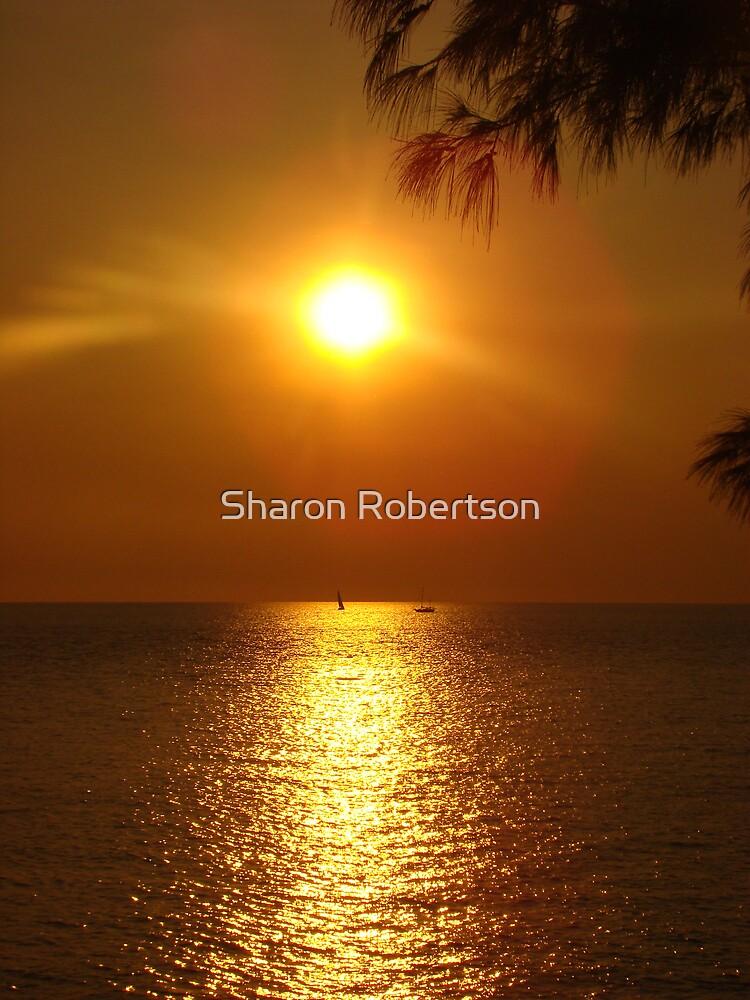 Sunset over Darwin by Sharon Robertson