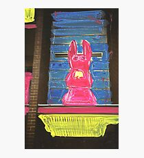 bunny building two Photographic Print