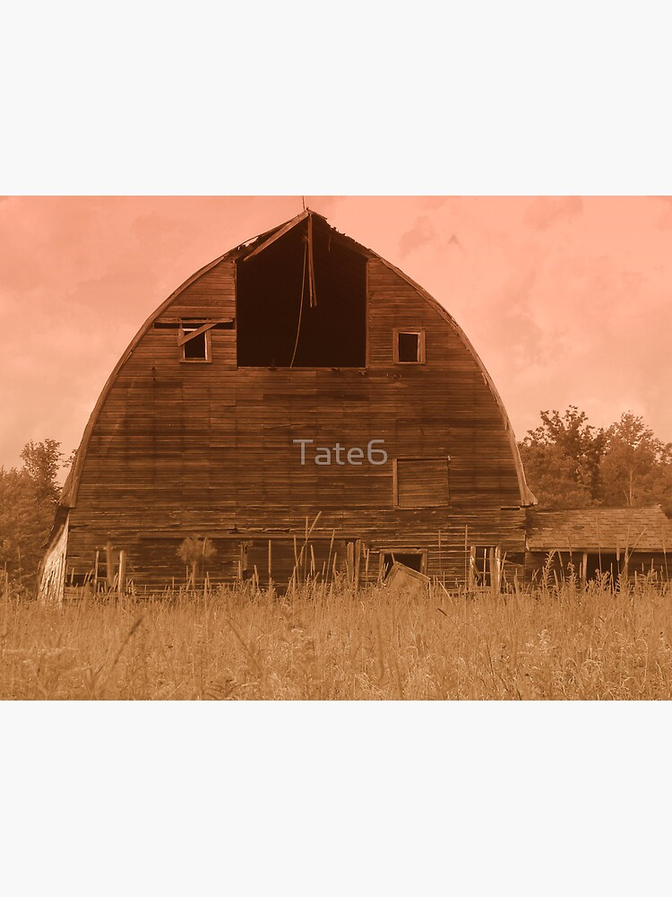 Aged Beauty by Tate6