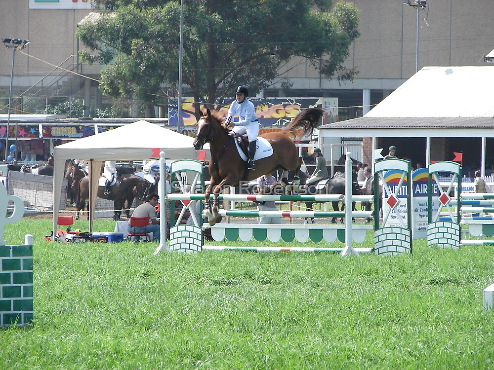 Show Jumping 2 by Sharon Robertson