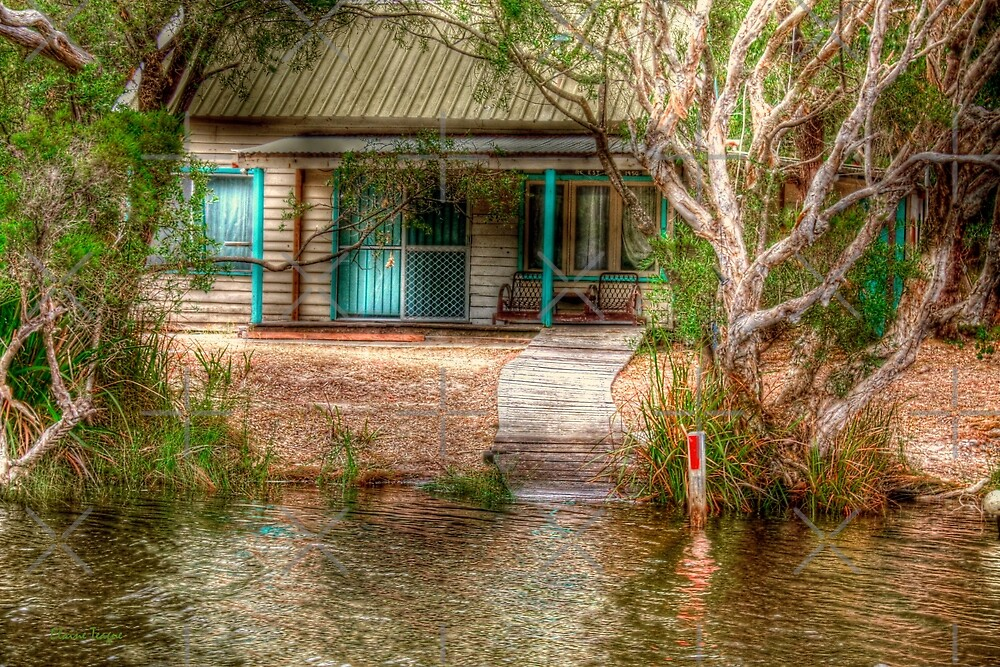 Hut on the Donnelly River, Nr Pemberton, Western Australia by Elaine Teague