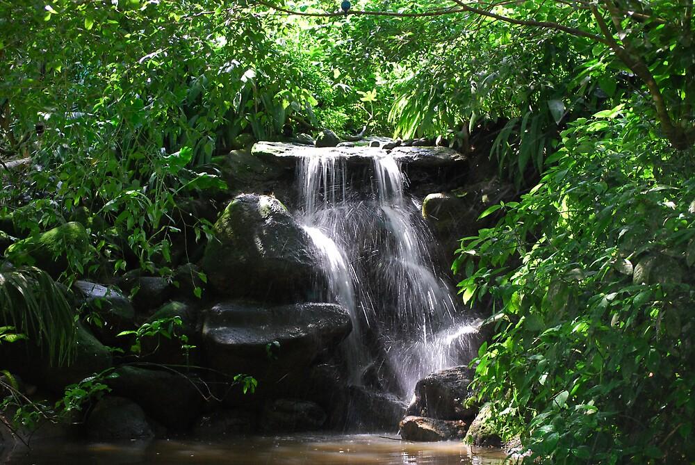 Waterfall Near Karunda by Fred  Smith