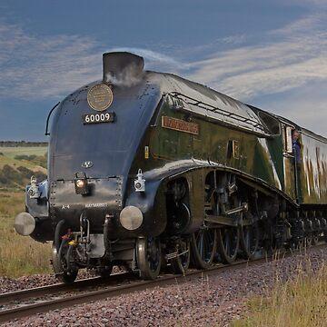 Union of South Africa steam engine by DerekCorner