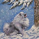 Keeshond Fine Art Painting by lashepard