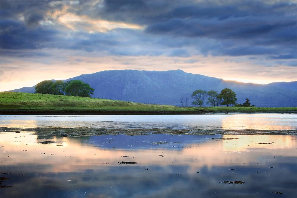 Azure by Becca  Cusworth