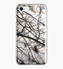 A tree branch after the storm iPhone Case/Skin