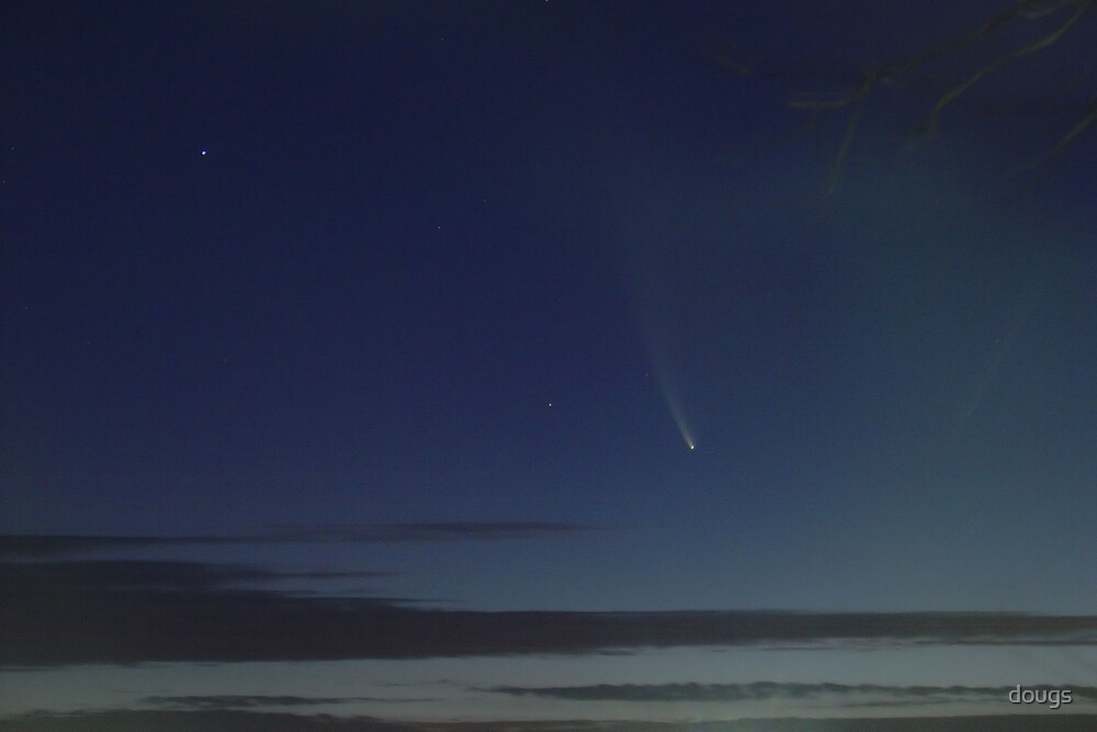 Comet McNaught  by dougs