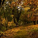 Autumn by the River Ness by jacqi